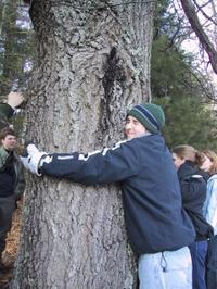 Treehugger_15